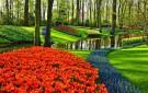 Ziedu laiks Holandē un Beļģijā